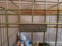 Ellie bo medium gold dog crate