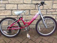 Raleigh Starz Airlite bike