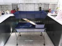 Guniea pig/rabbit cage