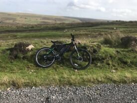 Custom carrera 1000w mountain bike/ e bike