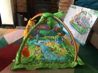 Fisher Price Rainforest Duluxe Gym