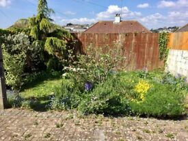 Two bed house with gardens in Efford