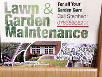 Garden maintenance ( all out side work around the house) lawnmower. Strummer