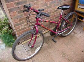 Bike / Bicycle; Raleigh Camaro mountain bike, very good condition