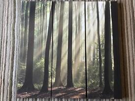 Canvas 3 panel woodland scene.
