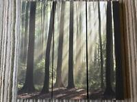 Canvas 3 panel woodland scene.