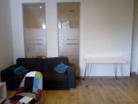 Luxury 1 bedroom flat