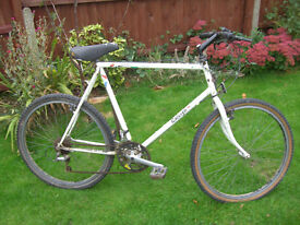 RALEIGH LIGHTWEIGHT MTB ONE OF MANY QUALITY BICYCLES FOR SALE