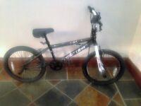 Nucleus Vibe bike