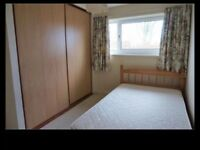 Spacious room to let in 2 bed house, ideal for mature student, central St Andrews