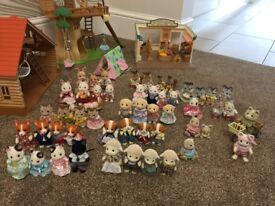 Sylvaian Families Bundle, Collection.