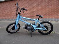 Fresh Built Honda C90 Custom BMX Pit Bike Lifan 110CC Manual Stunning