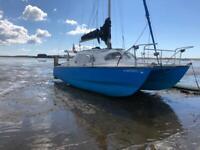 Hirondelle mk1 catamaran
