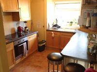 Nice small double rooms available!!!