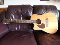 Freshman 12 String Electro Acoustic Guitar FA1DCE12LH (Left Handed)