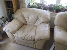 3 Seater Leather Sofa and 2 Single Seater Leather Armchairs