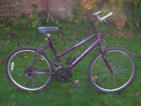 RALEIGH MAX STURDY MTB ONE OF MANY QUALITY BICYCLES FOR SALE