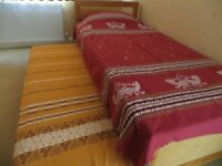 Two Indian cotton hand loom bed covers/throws