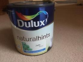 Dulux Jade White paint