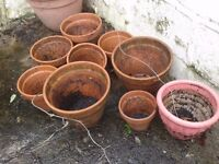 Assorted terracotta pots - £20 for all