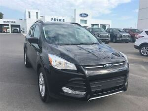 2016 Ford Escape SE - AWD, Heated Seats, Rear cam
