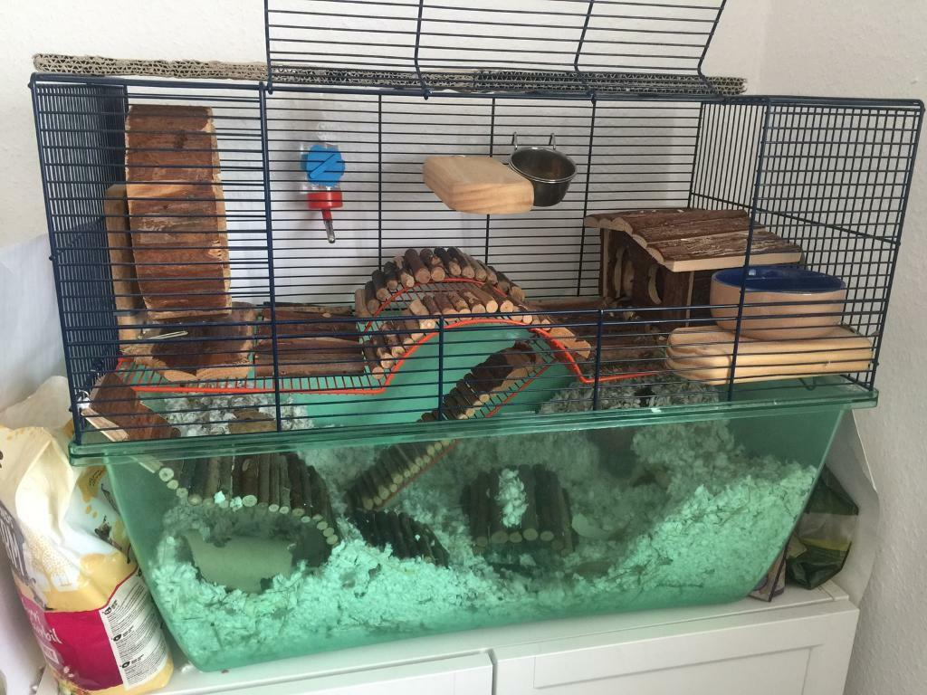 Large gerbil cage with lots of extras
