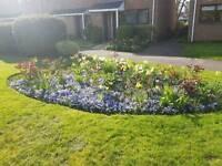Gardener / Landscaper