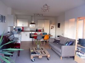 Double room available in bright, modern, park-facing flat, Anerley / Penge