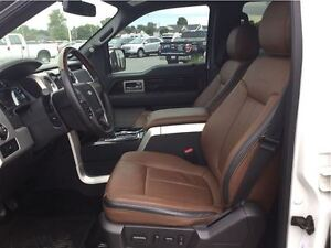 2014 Ford F-150 Platinum London Ontario image 6