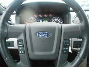 2014 Ford F-150 FX4 SuperCrew 3.5L V6 EcoBoost long box Windsor Region Ontario image 17