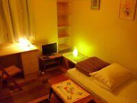 Single Room-Camera singola-Une chambre a louer