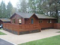Fabulous Log Cabin for sale at Percy Wood Country Park at Swarland in Northumberland