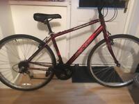 Adults apollo hybrid bike