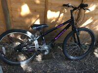 Dawes Boy's bike, fixed gear (missing rear deralier)