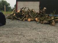 Hardwood firewood lengths