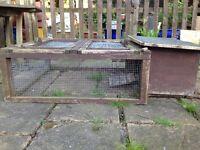 Guinea pig/tortoise run
