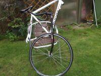 Viking Bike Frame