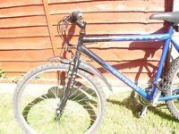 Cheap Mens/youths mountain bike, Universal Fusion 20 inch frame