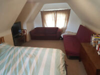 Large Bedroom in Spacious Balham Flat