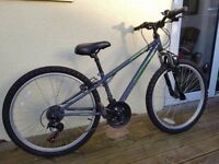 Switch Mountain Bike in excellent condition