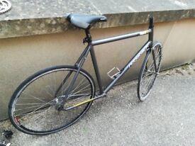 Ridgeback UltraFlight 2 Bike frame