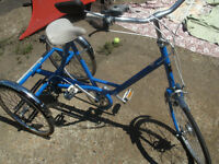 Pashley Picador Tricycle Trike