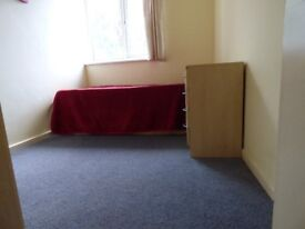 single room with good bus connection to Wimbledon courts