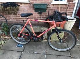 Retro vintage Peugeot raider bike