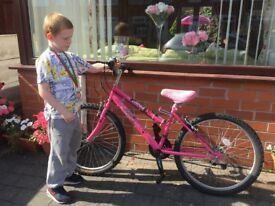 """Girls pink RALEIGH JCT 24"""" bike with 18 gears and fur seat cover age 9-13 years"""