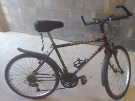 Mans Raleigh Bicycle in good condition
