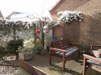 JKs - Garden Maintenance Service - For garden tidying, fence painting, small maintenance jobs.