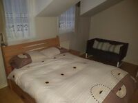 Spacious double room - v. short walk to W. Norwood station
