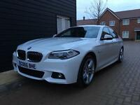 BMW 520d M Sport Auto, Huge Spec!! 2016 (66) white, leather, Nav.
