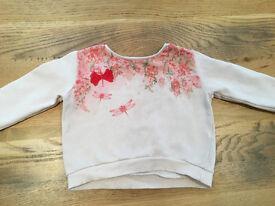 12-18 months baby girls clothes - Zara dragonfly jumper GUC